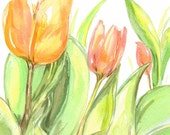 Spring Tulips Original Watercolor