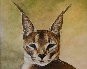 Caracal-Long earred Lynx watercolor painting