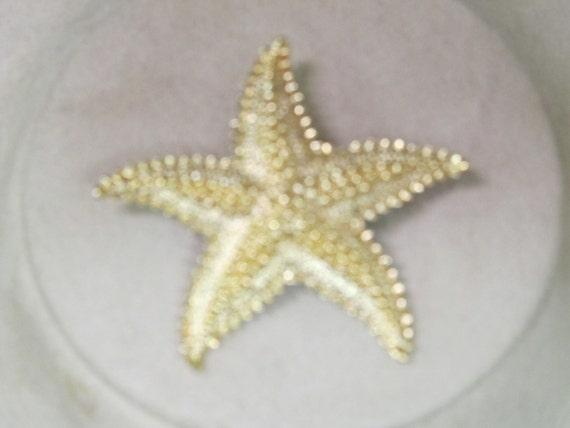Vintage Goldtone Starfish Pin  1970s