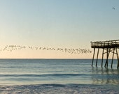Sunrise Flock  at the Oceanic . Seascape . Nautical Wall Art . Beach House Decor . 18x13 Giclée print  . Birds on the wing . rustic pier