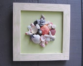 Framed U.S. Virgin Islands seashell and coral collage on pale green canvas
