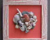 Reserved listing for Perry - Framed Maine & Virgin Islands Seashell Collages