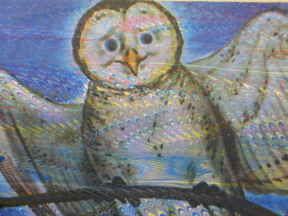 Marbling on vintage page from 1947 Bozo children's book: Owl