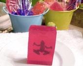 Princess Frog Soap (Watermelon Scent)