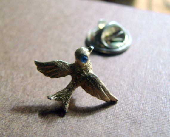 Adorable Golden Bird with a Sapphire Blue Eye