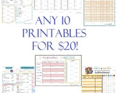 Custom Organizing Printables Kit (ANY 10 Printables) - Customizable Excel / Printable PDF