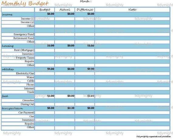 Monthly Budget Planner / Financial Organizer - Customizable Excel ...