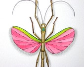Pink Walking Stick insect art print pink green gold gift unique unusual