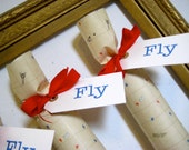 Paper Airplane Party Cracker