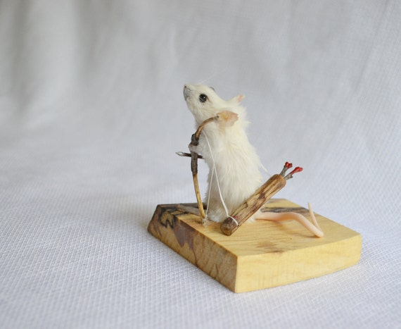 Anthropomorphic taxidermy mouse.