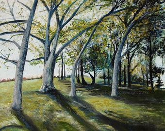 """Archival Print of original oil painting """"Sycamores in the Late Summer Light"""""""