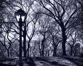 "Central Park New York photo black & white architecture 8x12""  print"