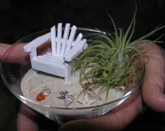 Miniature BEACH GRASS - Tillandsia Air Plant LIVE Plant for your Miniature Beach or Wedding Topper  - by Landscapes In Miniature