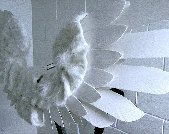 Powered Mechanical Angel Wings