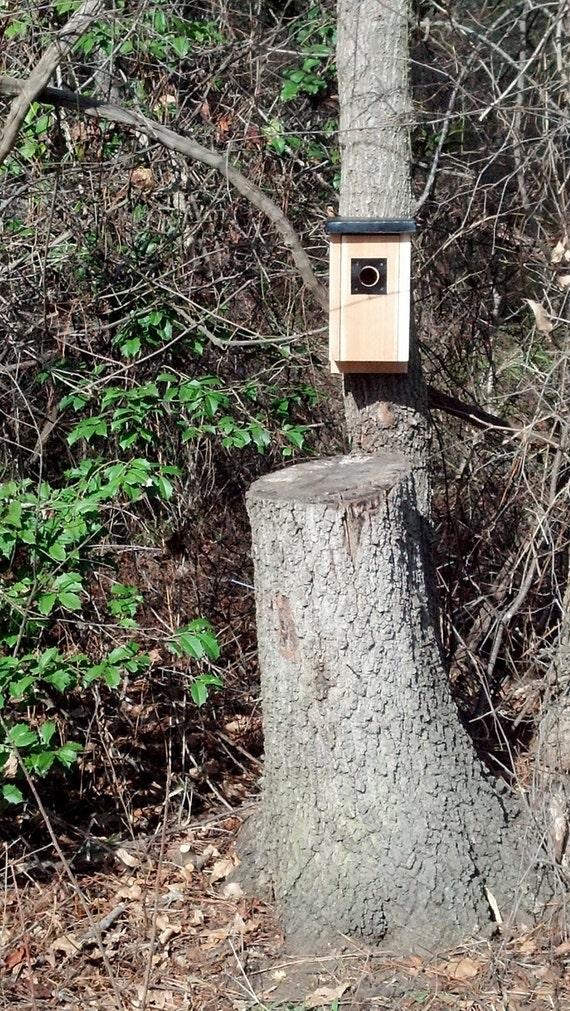 Cedar Bluebird Box