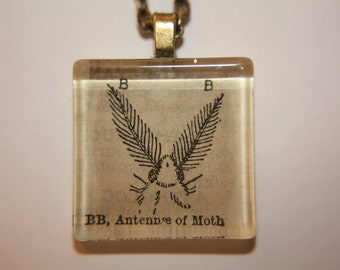 Antennae of a Moth Necklace - Geek Chic