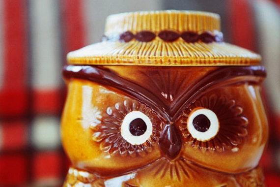 hoo stole the cookie from the cookie jar - cute ceramic vintage owl cookie jar