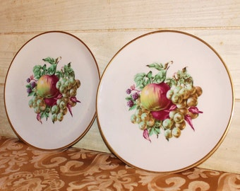 SALE! - Vintage Embassy USA Vitrified China Plate Set - Shabby Chic - Fruit - Home Decor - Housewares - Collectibles