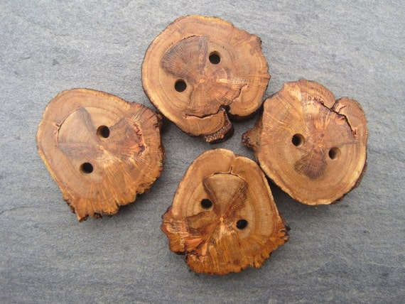 Spalted CherryTree Branch Buttons for Knitting, Crochet, or other Craft Projects (Set of 4)