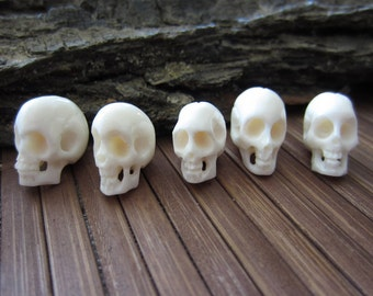 Amazing detail  Hand Carved Bone  5 piece Small Skull,  Carved Ox Bone , NOT Drilled, B0001