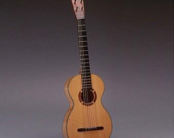 Salon Guitar