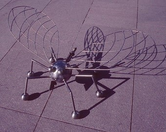 Big Bug (Version 1) is a giant steel insect sculpture by sculptor Bruce Gray