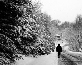 Snow Path in the Winter Black and White Snow Photo, Blizzard, 8x10 Photo, Framed Photography Option