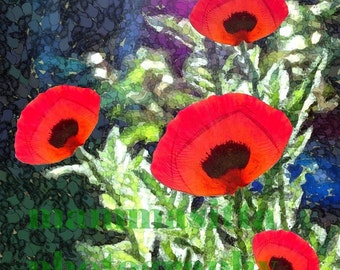 Poppy Blossom Quintet