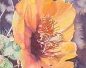 "Cactus Flower, Yellow, Green, Orange, Buckhorn Cholla, WATERCOLOR PAINTING, bright, desert flower, giclee print 8"" x 8"""