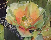 "PRICKLY PEAR CACTUS, Fine Art Giclee' Print, 8"" x 8"", Watercolor painting, Green, Orange, White, southwest desert, Southwest Art, Wall Art,"