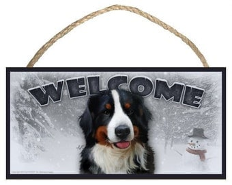 "Bernese Mountain Dog (male / larger) Winter Season 10"" x 5"" Wooden Welcome Sign"