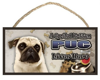 "A Spoiled Rotten Pug (tan) Lives Here 10"" x 5"" Wooden Sign v2"