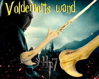 Voldemort wizard Wand superior Harry Potter