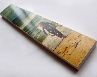 "Surfing Photo Art by Patrick Lajoie - Limited Edition Fine Art Photo Transfer on 6""x36"" Wood Panel"