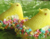 Easter Candy -  Chocolate Dipped Sugar Coated Marshmallow Peeps