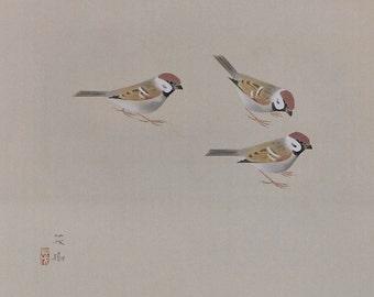 Vintage Japanese Art Painting Tree Sparrows by Kuromitsu Shigeki - 110363