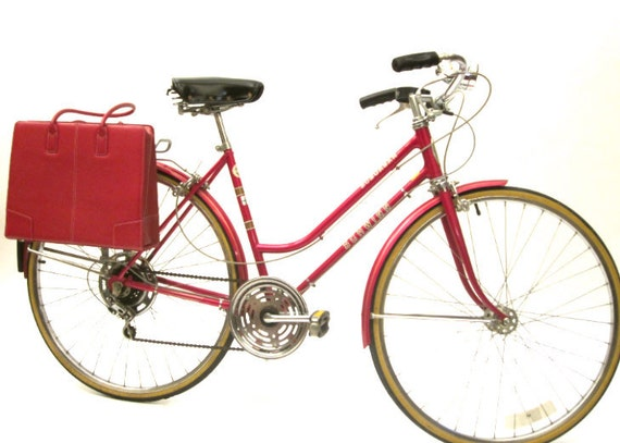 Beautiful Briefcase Bicycle Pannier