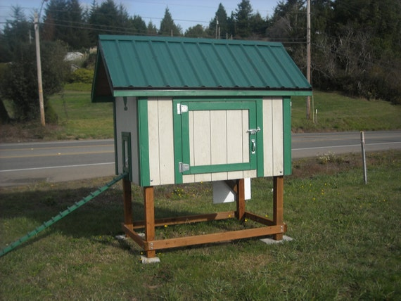 Custom Built Elevated Chicken House