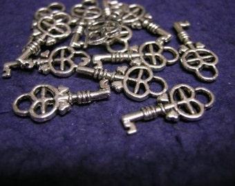 12PCS Antique Silver Plated Floral Key Metal Charm-1009