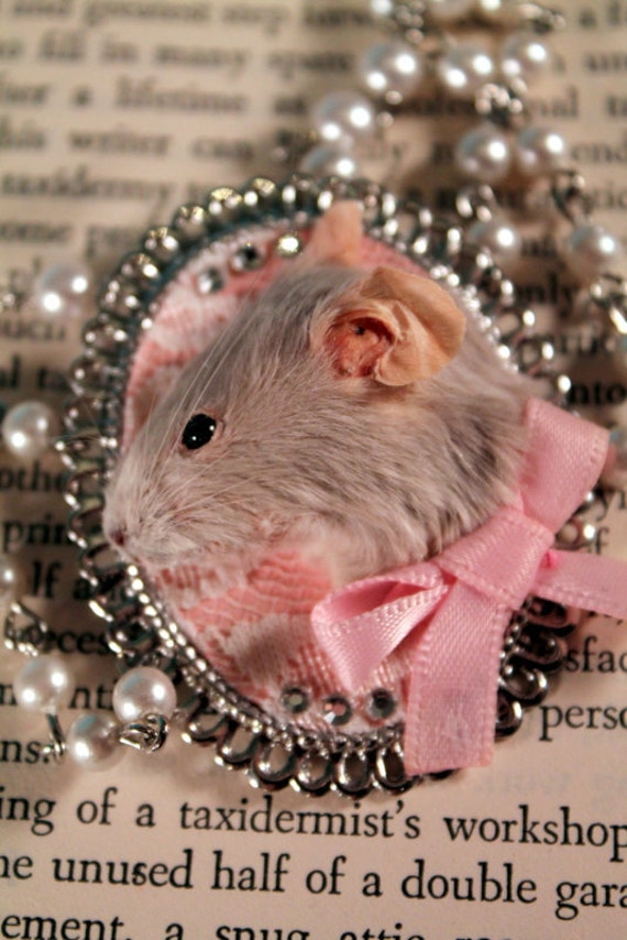 Taxidermy Mouse Cameo Style Necklace in Dusty Grey & Pink