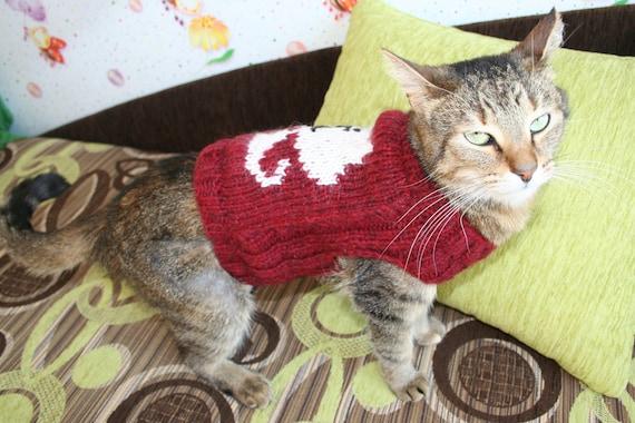 Knit Cat/Dog Sweater