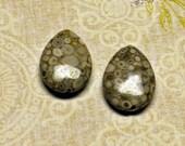 Snowflake Magical Agate Gemstone Focal Beads Pair