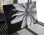 Blank Flower Card Black and White Etching with Envelope A7 5x7 flower etching