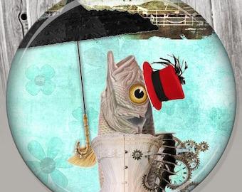 Umbrella Fish Pocket Mirror, Photo Mirror, Compact Mirror of Steampunk Illustration Image - A71