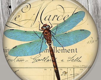 Vintage French Dragonfly Pocket Mirror, Photo Mirror, Compact Mirror Illustration Image A34
