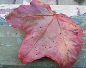 Hand-Cast Concrete Leaf