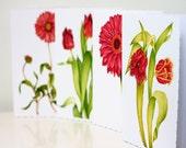 Blank Note Cards, 4 Pack, Assorted Red Flowers, Tulips, Gerbera, Gaillardia, Deckle Edged Card