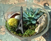 Eiffel Tower and Succulent Terrarium - A Perfect Birthday Gift - DON'T FORGET to add a CHARM