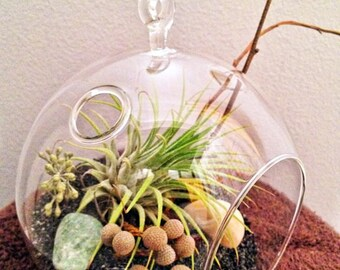 Glass globe Air Plant Terrarium - A Perfect Birthday Gift - DON'T FORGET to add a CHARM