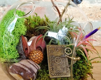 Steampunk Air Plant and Moss Terrarium INCLUDES a charm to dangle - A Unique Birthday or Fathers Day Gift